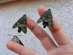 hawkmoths everywhere by AltairSky