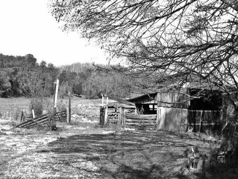 The Old Barn by TressaMarie2005