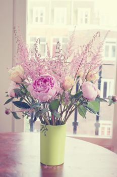 Pink peonies and roses by camnhungth