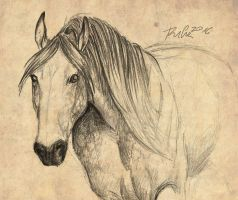 Andalusian-sketch by Rufciu