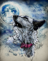 .:Tears from the Moon:. by WhiteSpiritWolf
