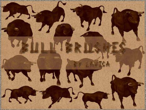 Bull Brushes by Lavica-Photoshop