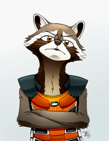 What the heck is a raccoon?.. by HalcyonMoufette
