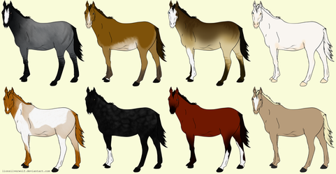 20 Point Horse Adopts OPEN by lionsilverwolf