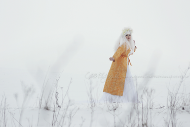 In the snow 2 by Estelle-Photographie