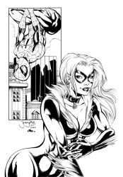 Black Cat and Spidey by Inker-guy