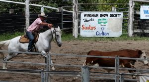 Stock - Horse Team Penning - 039 by aussiegal7