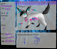 Mistshade- DarkClan- Evolutions of Lore by shotabunnyfairy
