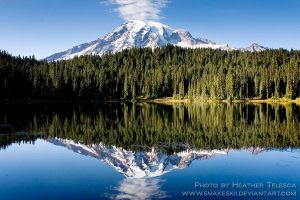 Rainier Reflection by HeatherTelesca