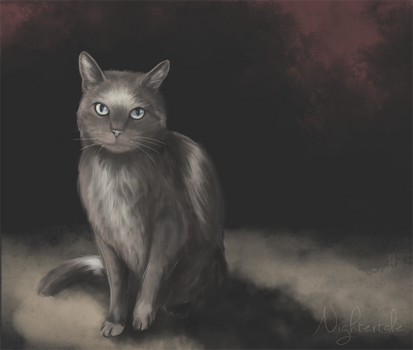 Ghostly Cat by ninebark