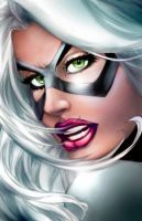 Black Cat Warm Up by NormanWong
