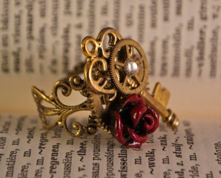 Steampunk Ring by oasiaris