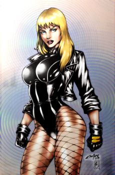Black Canary (colors) by FantasticMystery