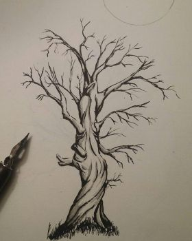 Twisted Tree Ink Drawing  by Lynxcall