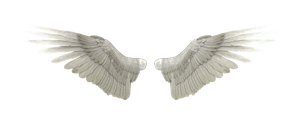 Angel Wings by GRAPHICSOUL
