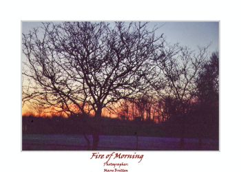 Fire of Morning by plutoniancrow