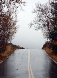 Wet Road by MikeTarr