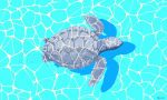 Sea turtle by Plioart