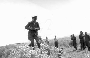 Erwin Rommel picking flowers by Xhuuya