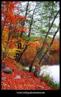 AUTUMNAL 12 by vollyy