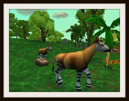 The Rare and Endangered Okapi by ProfDanB