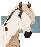 6014 ES Snowshoe by NorthEast-Stables