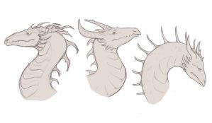 Dragon sketches by MinaInTheMiddle