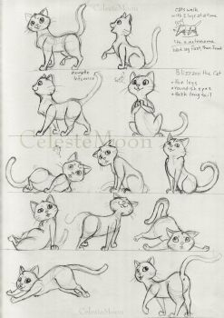 Blizzard the Cat Concept Poses by CelesteMoon