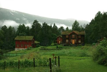 Norwegian Organic Farm by Navanna