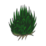 Yucca by ReapersSpeciesHub