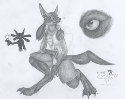 lucario real by legendguard