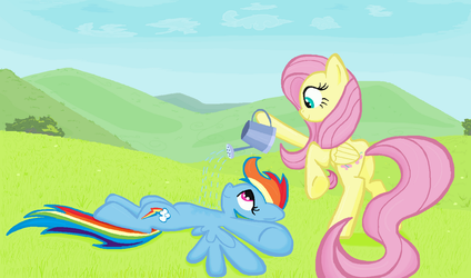 Fluttershy cool down Rainbow dash in Ms-paint by sallycars