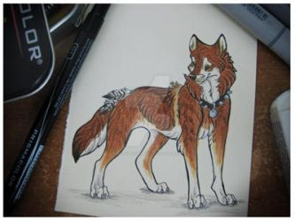Tahlin-For WildSpiritWolf by The-Woodland-Wolf
