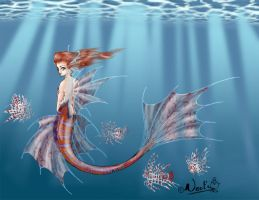 Firefish Maid by noot