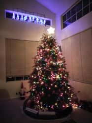 Our Christmas tree at night! by Zekrom734