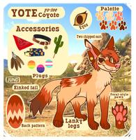 YOTE feral ref | 2018 by californiacoyote