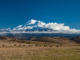 Mt. Shasta by MartinGollery