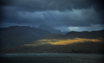 The Highlands by Nelleke