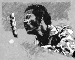Chuck Berry by wooden-horse