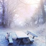 Last Snow by ForestGirl