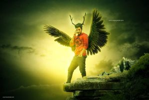 Hass Wings by hasshasib001
