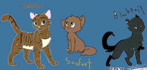 Oakstripe, Sunfoot, and Blacktail. by Avraplikesstuff