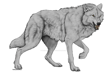 Snarly Wolf by TheSodaSmuggler
