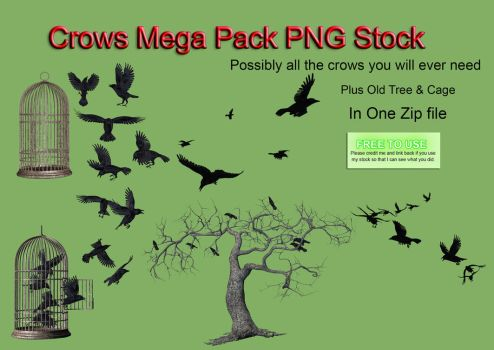 Crows Mega Pack PNG Stock by Roy3D