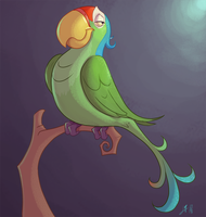 Perico  Parrot by Psicoyote