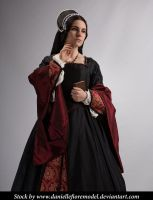 Black Tudor Stock 4 by DanielleFiore