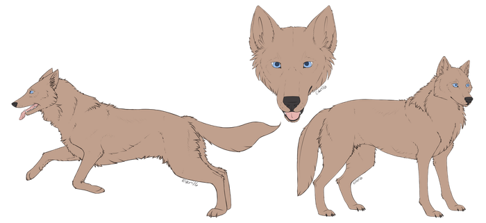 [c] Mexican Wolf Lines by EvlonArts