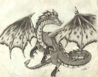 Dragon by dshwshr55
