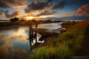 Swamp from Vendee by Philippe-Albanel