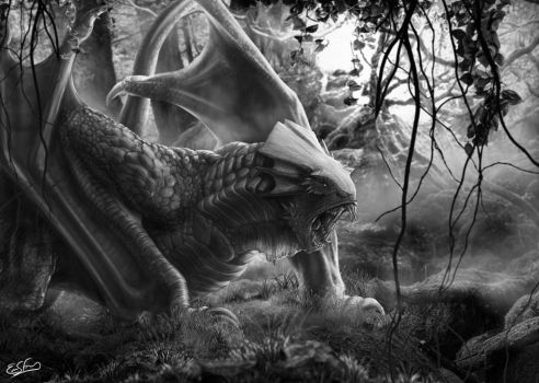 Gorilla Dragon - grayscale by franeres